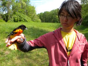 Emily with Baltimore Oriole 2