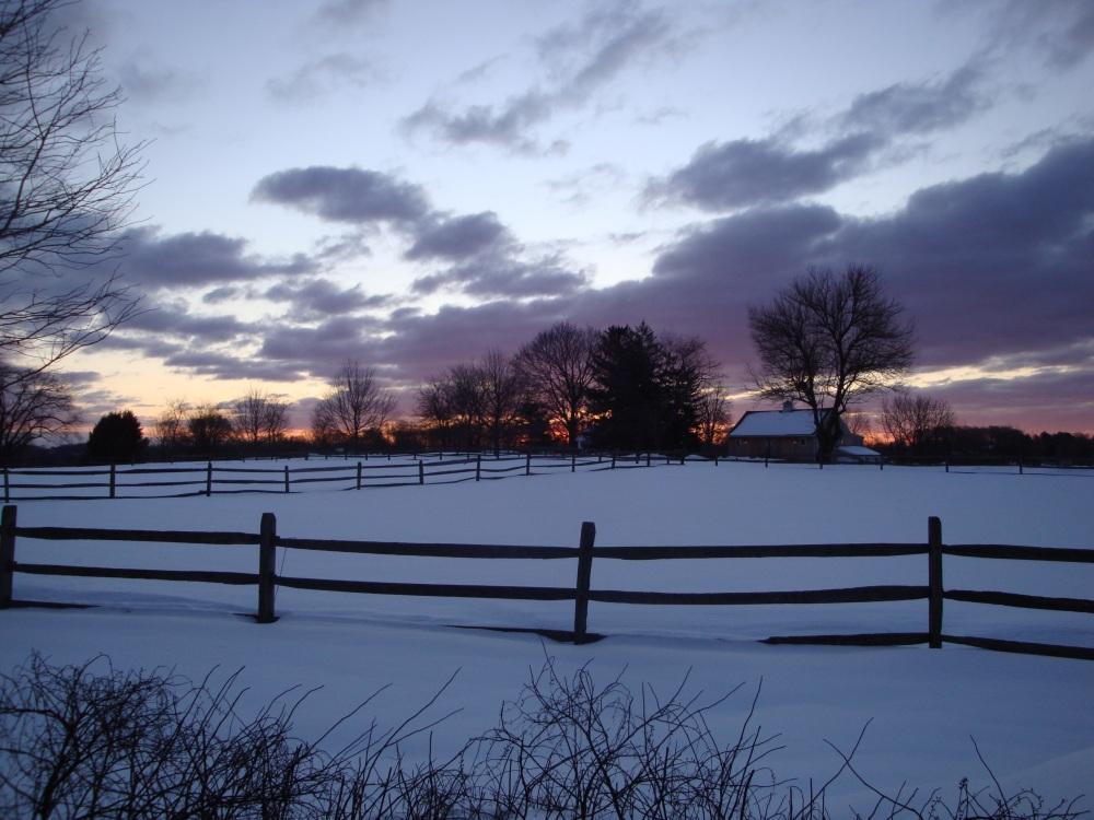 Winter in Willistown