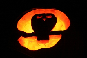 pumpkin sawwhet BINNS IMG_2198 copy