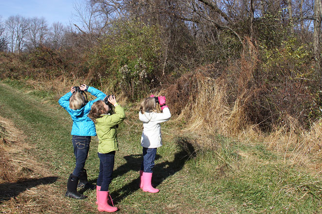 Jr. Birders birding!