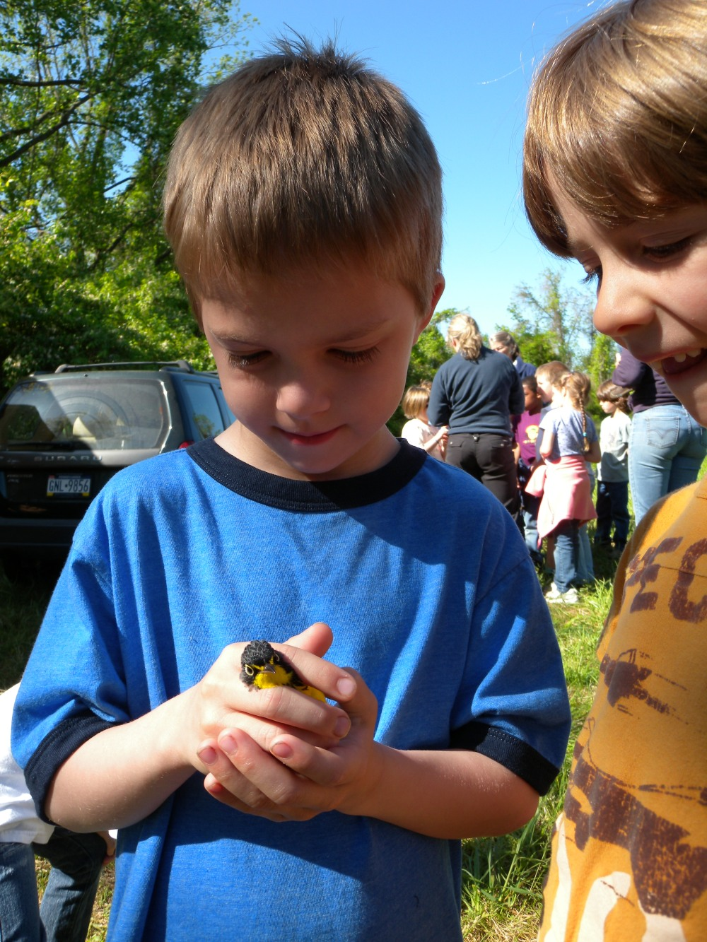 Westtown 1st grader holding Canada Warbler.  Photo by Blake Goll