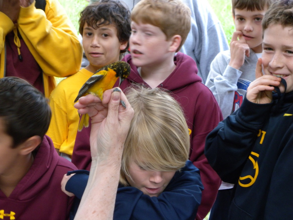 5th grade Haverford students  & Baltimore Oriole.  Photo by Ben Reynard.