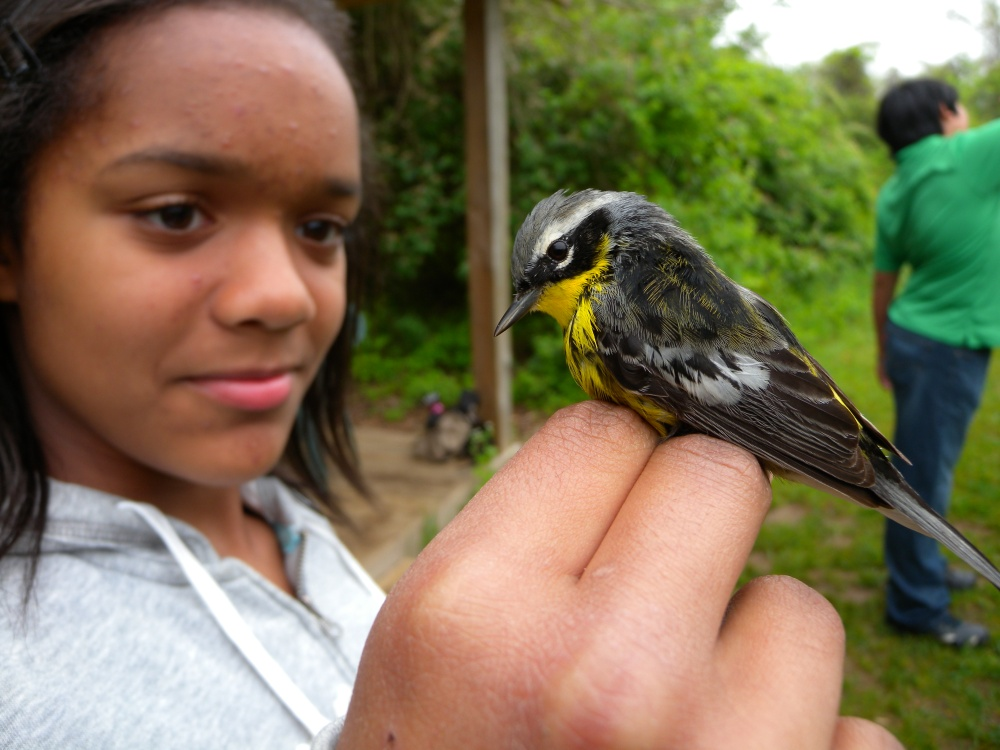 7th grader with Magnolia Warbler.  Photo by Blake Goll