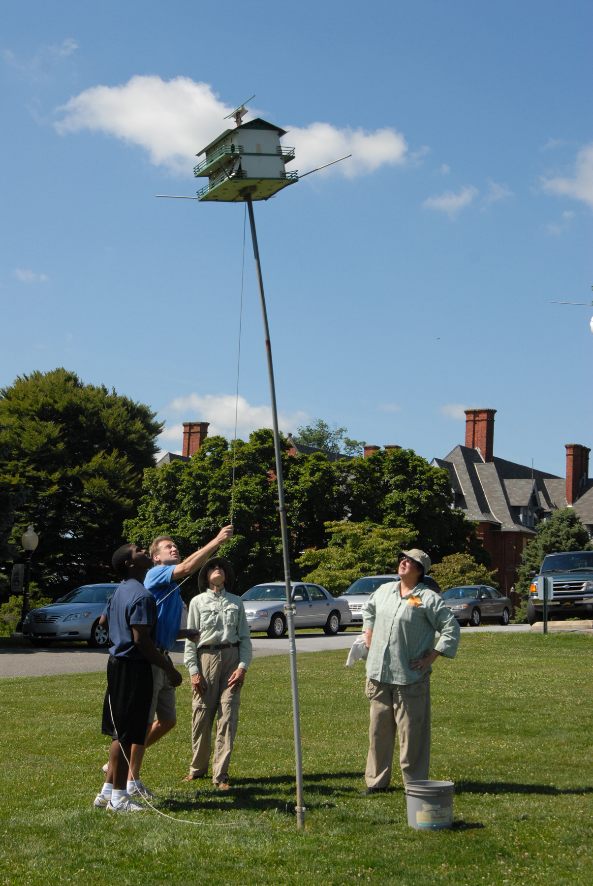 Lowering a Purple Martin House. Yikes!