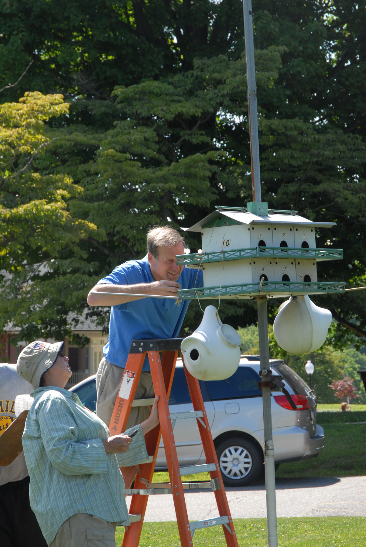 Don McNeal reaching for Purple Martin babies for Doris McGovern to band.