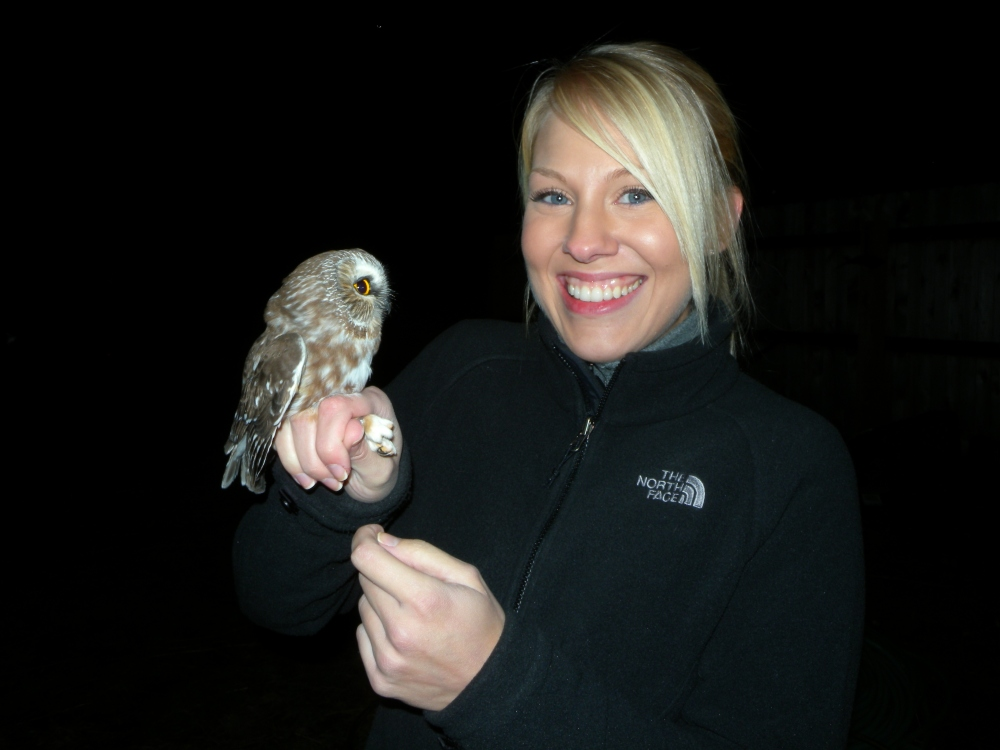 Rebecca Goll with Saw-whet Owl before release.