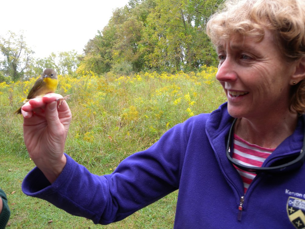 Cathy Staples and Common Yellowthroat.