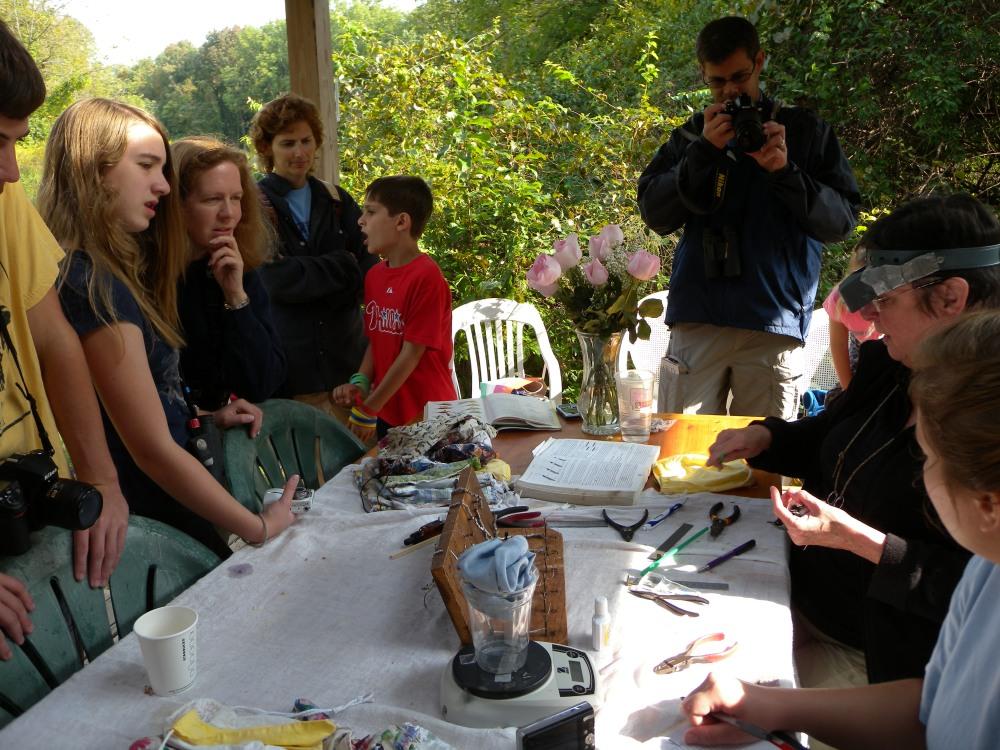 Visitors observing bird banding.