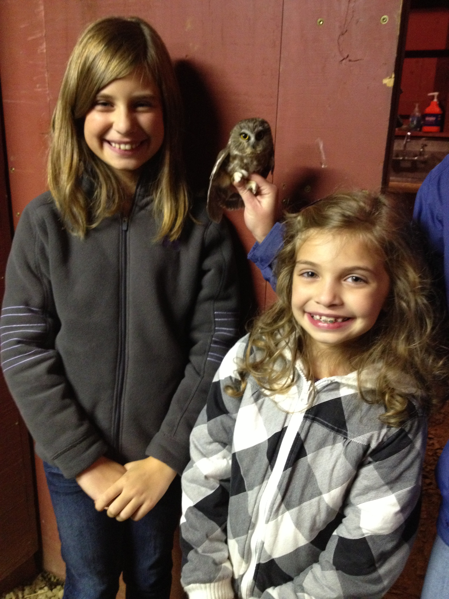 Children with Saw-whet Owl.