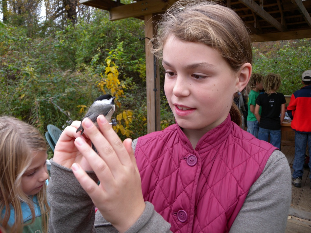 Child with Chickadee.  Photo by Blake Goll.