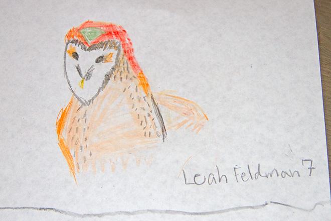 Barn Owl drawing by a PA Young Birder.  Photo by Adrian Binns