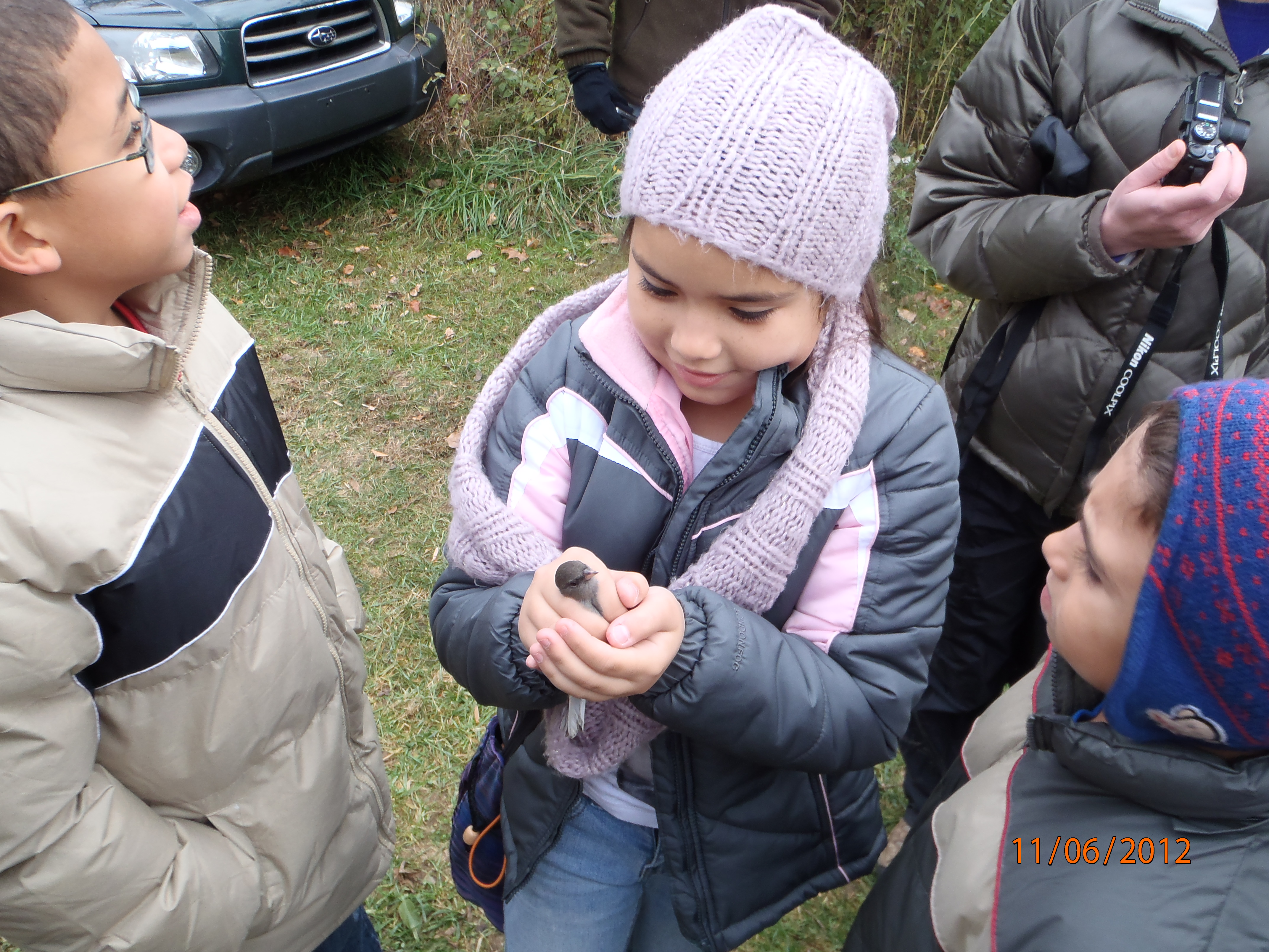 Child holding Junco before release.  Photo by Bill Hartman.