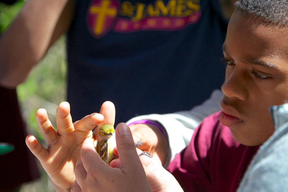 Saint James student with White-eyed Vireo.  Photo by Nat Hamilton