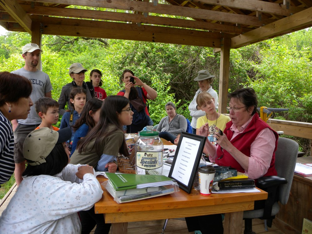 Doris McGovern educating the Young Birders about banding.