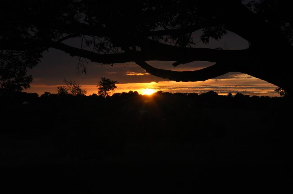 Willistown Sunset.  Photo by Justin Thompson