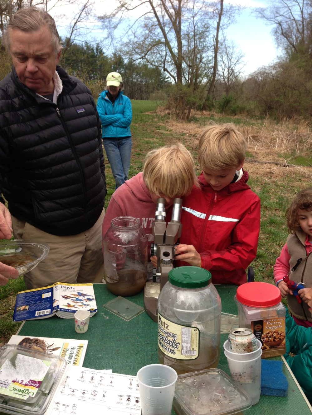 Junior Birders studying wetland invertebrates during wetland exploration.  Photo by Blake Goll