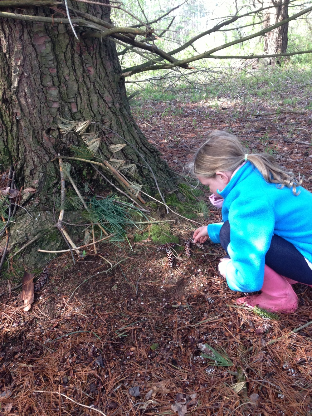 Junior Birder connecting with nature by building a toad abode.  Photo by Blake Goll