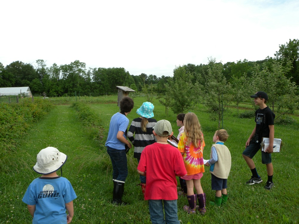 Young Birders monitoring nest boxes at Rushton Farm.  Photo by Blake Goll.