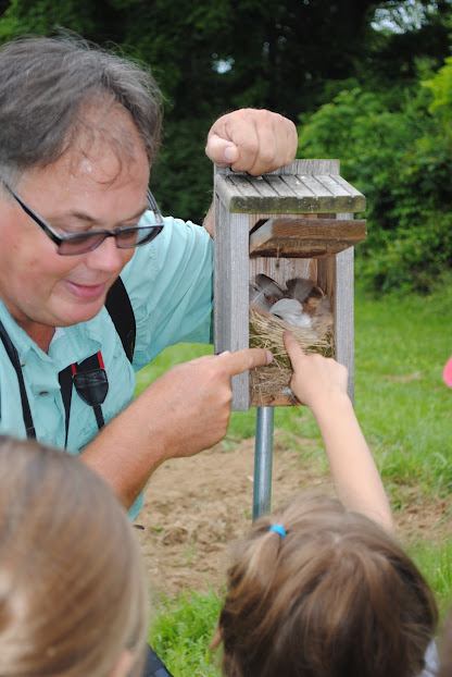 Children monitoring a nestbox at Rushton Farm.  Photo by Gloria Ives.