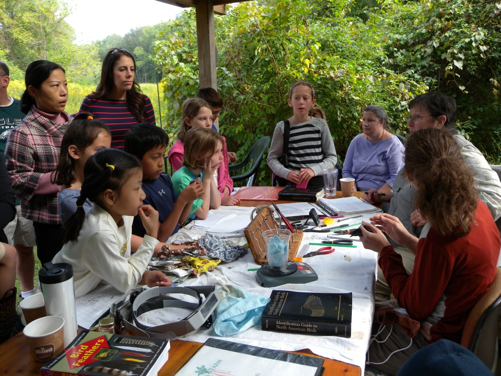 Eager Junior Birders and families crowded around the banding table at Rushton in September during the Open House
