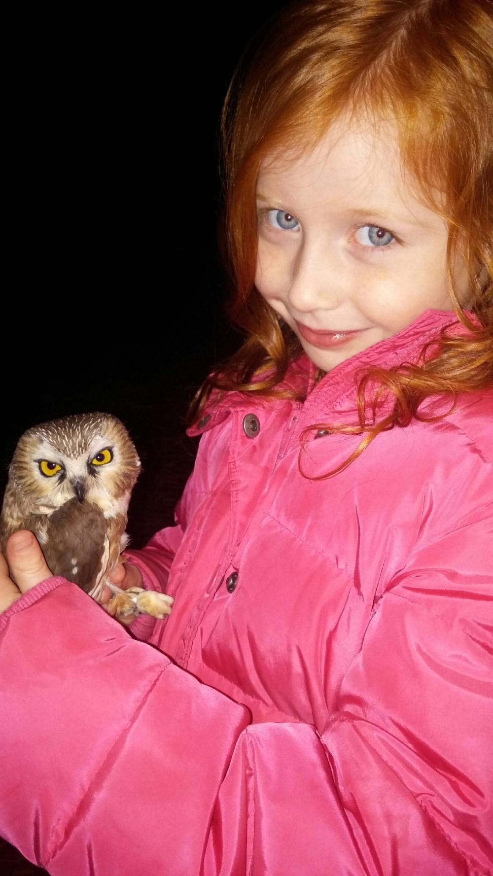 Young Birder with Northern Saw-whet Owl at Rushton.