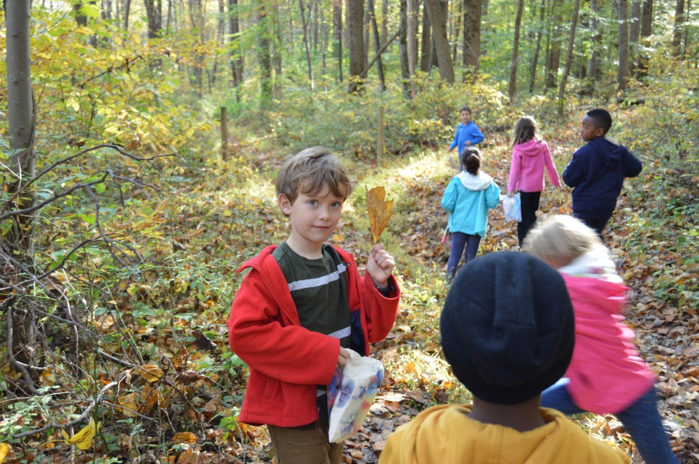 Abington Friends students exploring the forest floor.  Photo by Blake Goll.