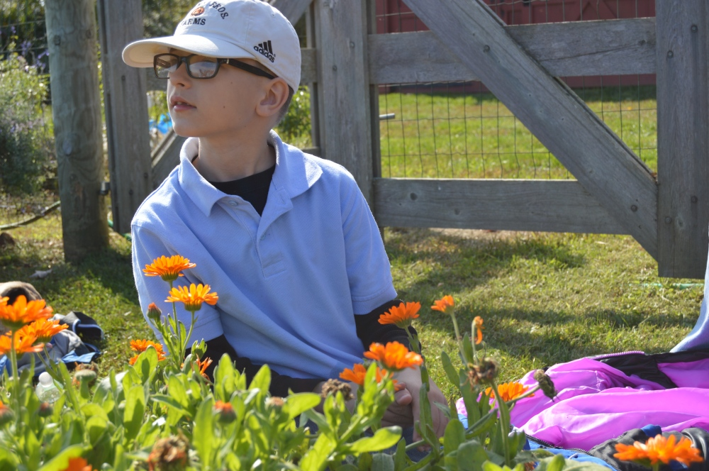 Abington Friends student in the herb garden, reflecting on his Rushton experience.  Photo by Blake Goll