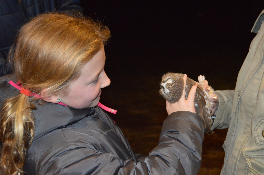 Student holds a Northern Saw-whet Owl before release, October 2014.  Photo by Blake Goll