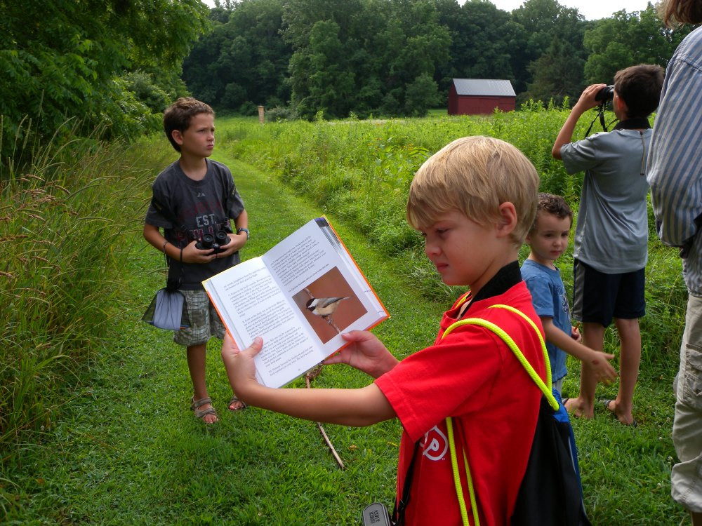Jr. Birder using a field guide at Rushton Farm.