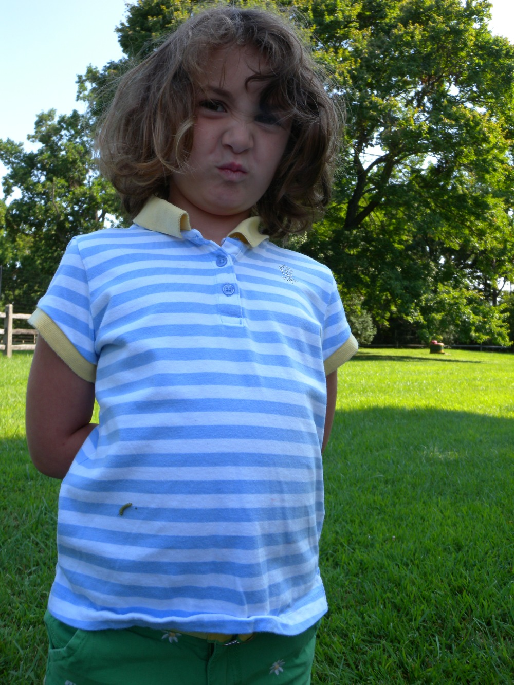 In fact, one of the Jr. Birders came out of the milkweed patch wearing a tiny monarch caterpillar!  July 2014.