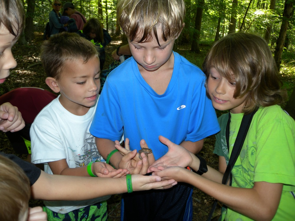 Young Birders observing a toad at Ashbridge Preserve, Summer 2014.  Photo by Blake Goll