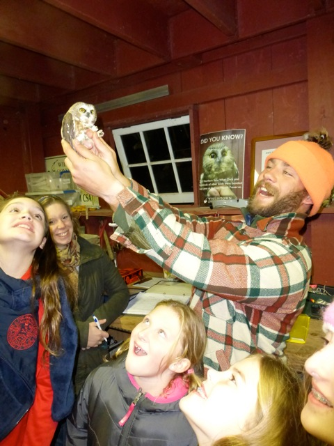 Students marvel at a banded Northern Saw-whet Owl at Rushton, October 2014.