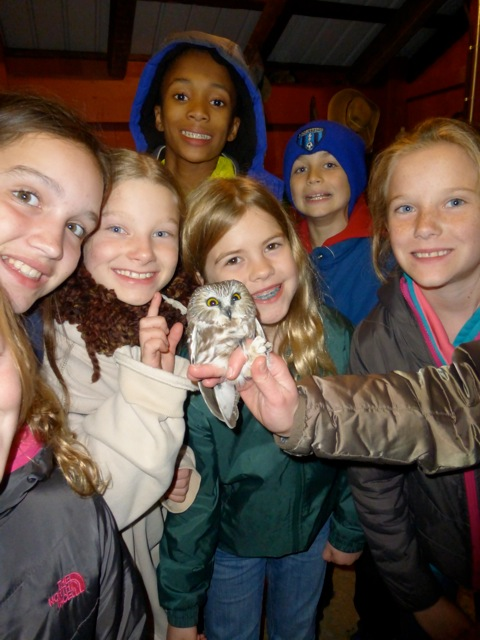Germantown Academy students and Northern Saw-whet Owl at Rushton, October 2014.