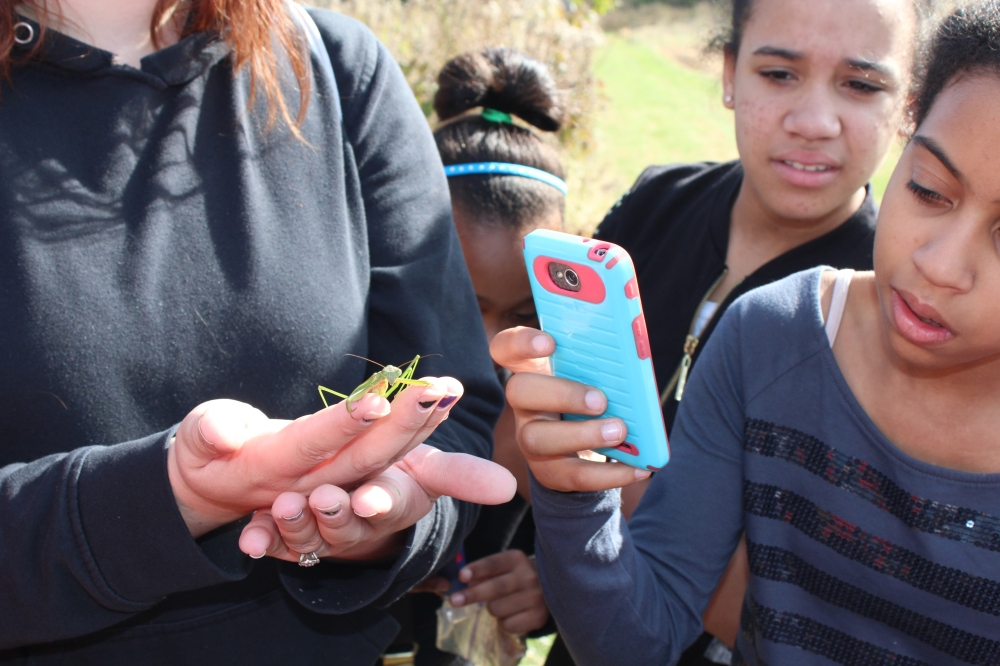 Melton Center student peeks around her cell phone at a Praying mantis, Fall 2014.  Photo by Kelsey Lingle