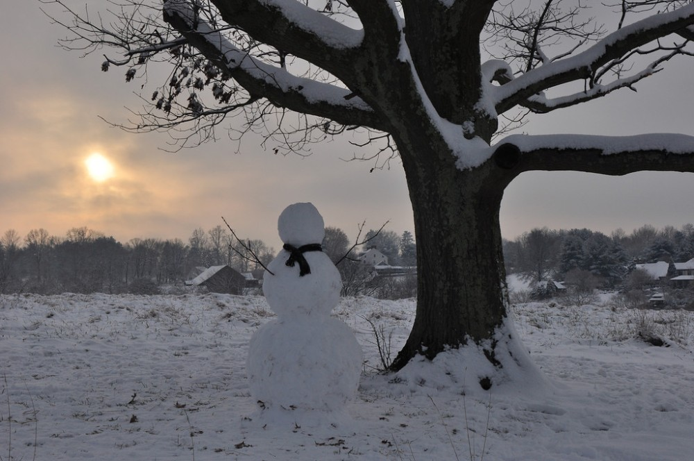 Pensive Snowman at Kirkwood Preserve.  Photo by Justin Thompson.