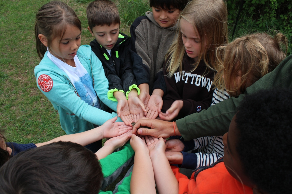 Westtown first graders releasing a warbler together after banding at Rushton this May. Photo by Kelsey Lingle.