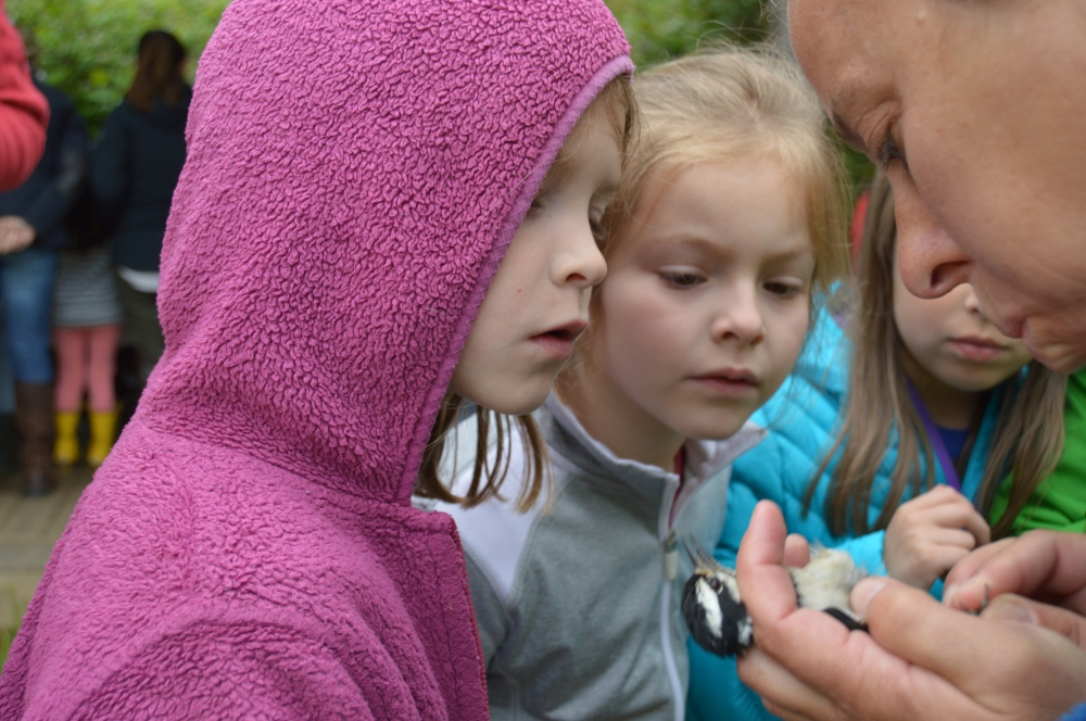 Westtown Elementary students visited the banding station in May. Photo by Blake Goll/Staff