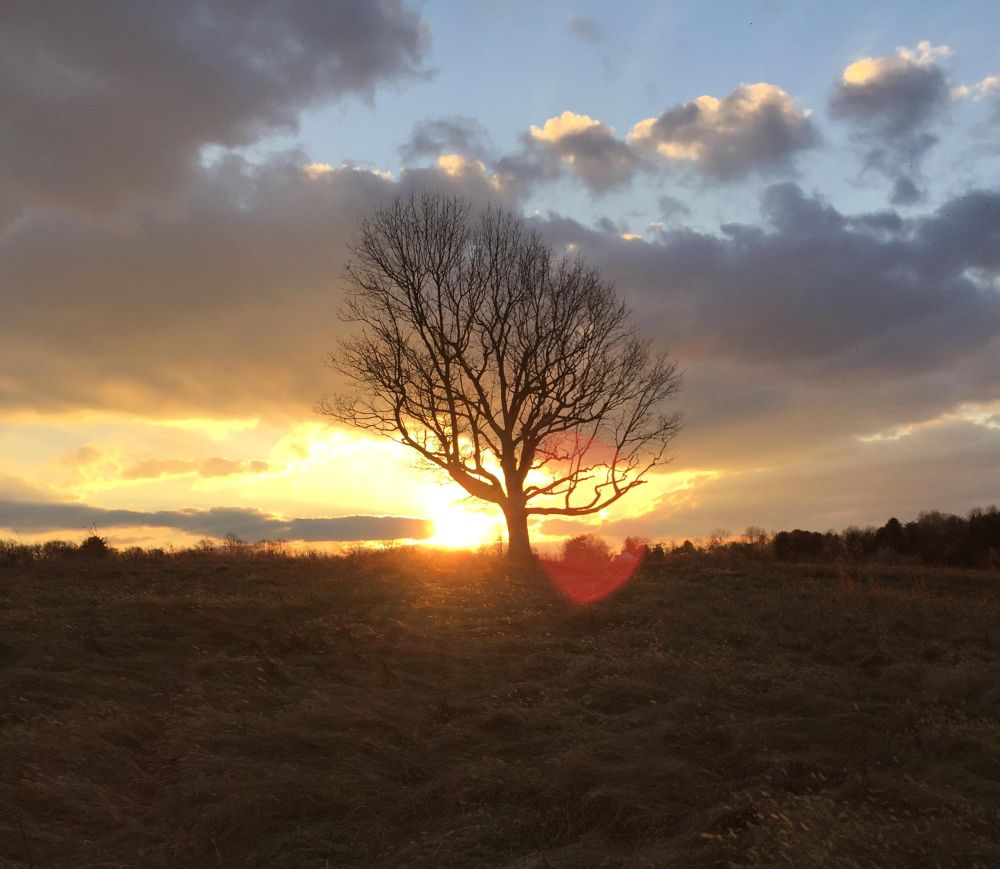 December sunset at Kirwood Preserve. Photo by Blake Goll/Staff