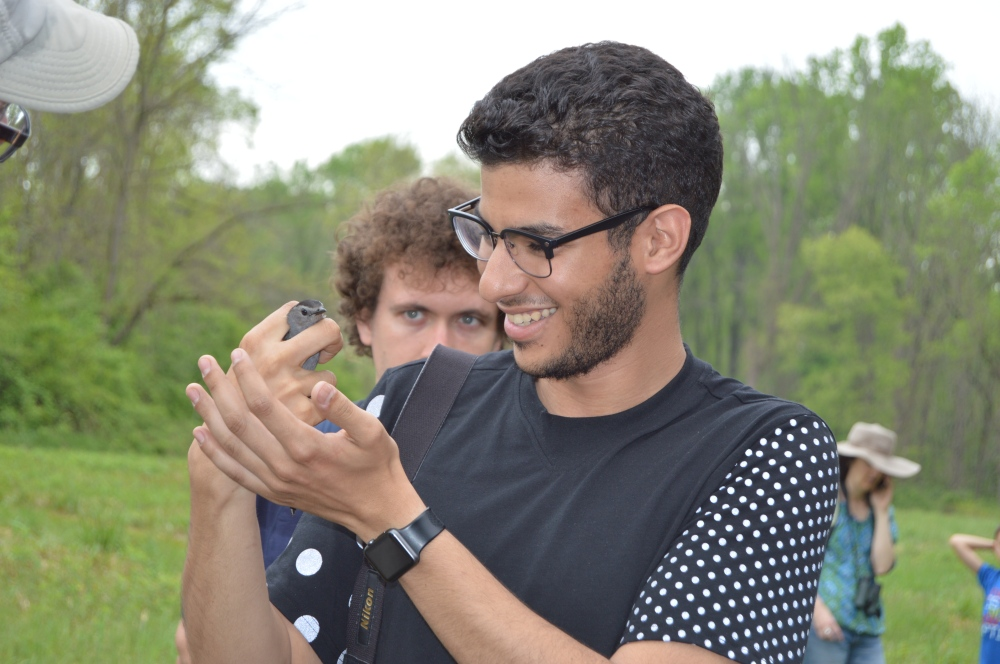Drexel University student helping to release a catbird this spring. Photo by Blake Goll/Staff