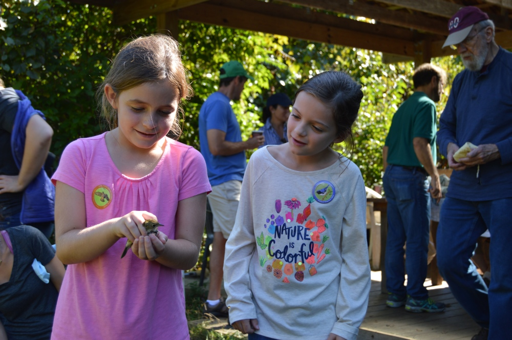 Jr. Birders releasing an Ovenbird during September's Open House. Photo by Blake Goll