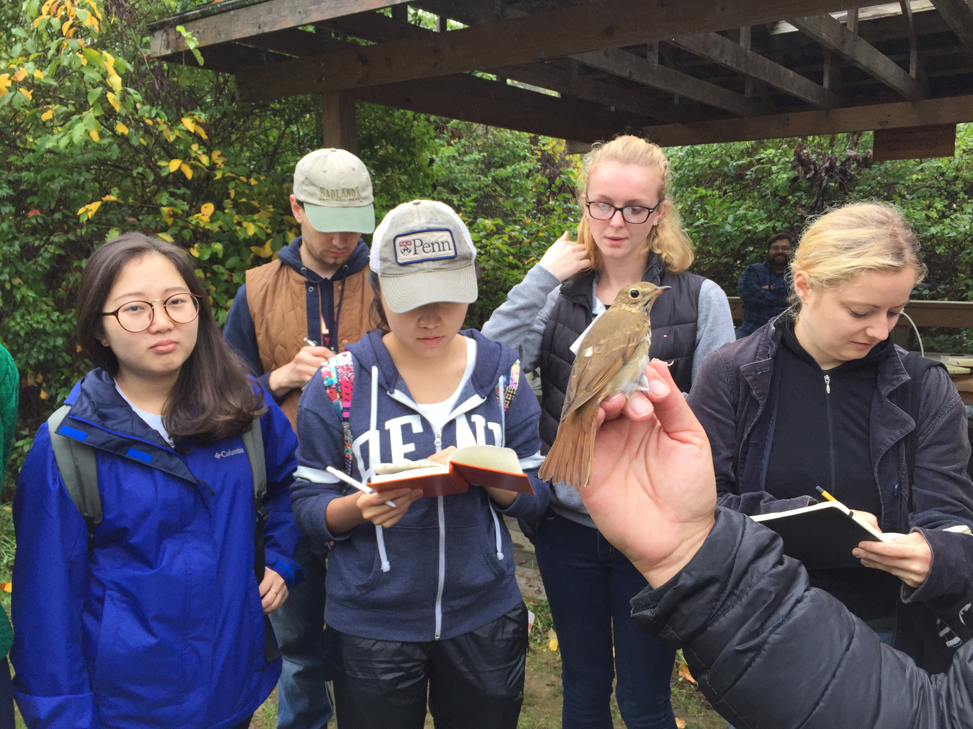 Hermit Thrush and UPenn Masters of Environmental Science students in October. Photo by Blake Goll